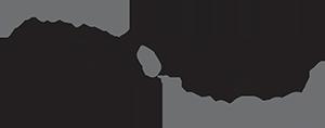 Avidyne new-logo-300px